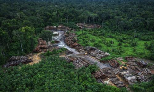 Desmatamento em março na Amazônia e no Cerrado é o maior dos últimos anos