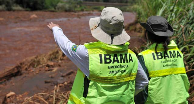 Ibama celebra parceria com AGU e MPF para combater desmatamento