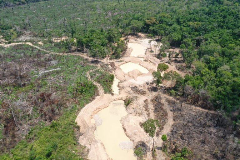 31 garimpos ilegais são fechados em 15 dias no Pará