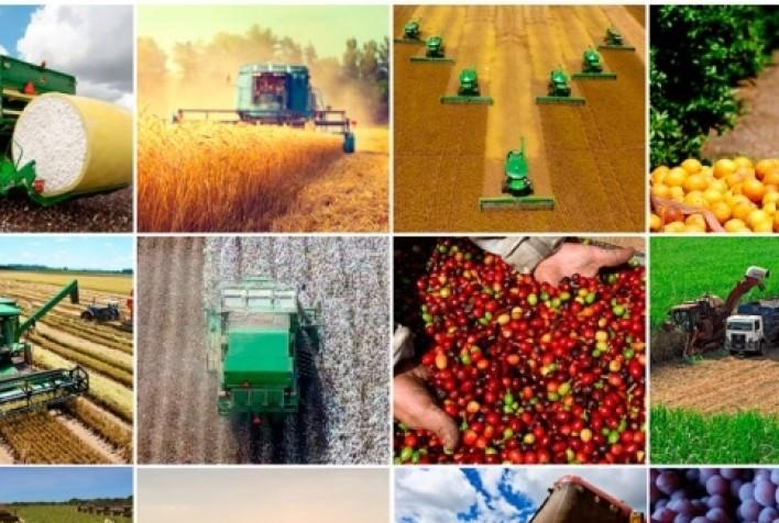 Valor da produção agropecuária alcança R$ 871 bilhões em 2020