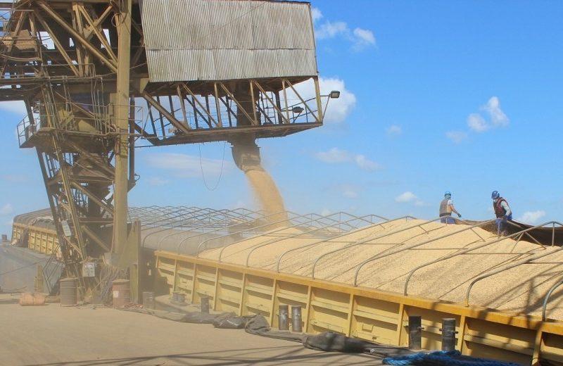 Portos amazônicos irão desbancar os do sul do país este ano no transporte de soja e milho